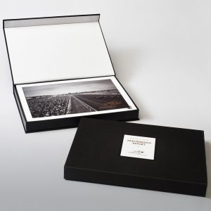 Brochure & Box Set
