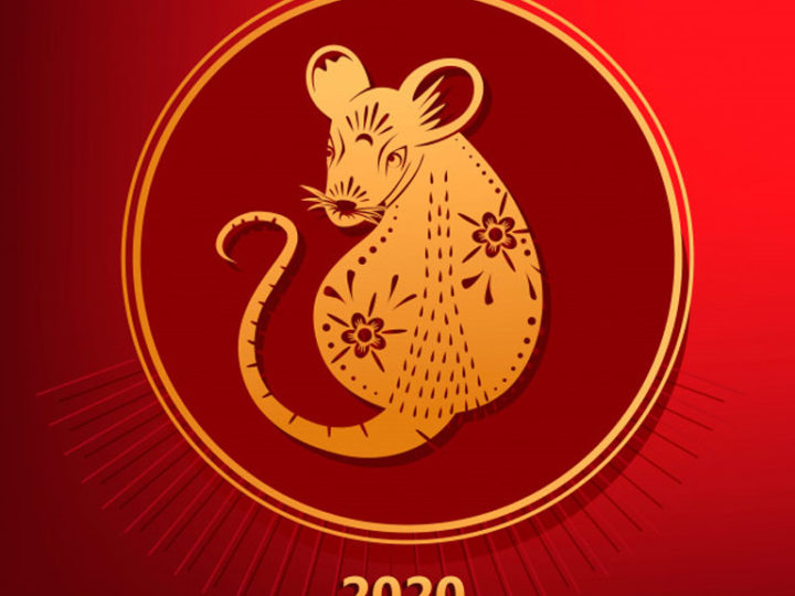 Year of the Rat Production Schedules
